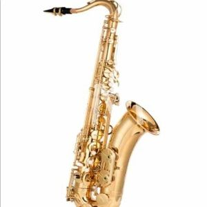 Alto Brass Saxophone New with accessories